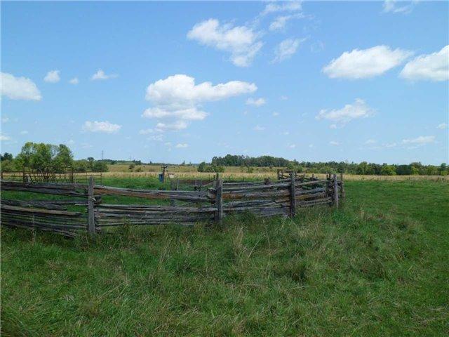 Vacant Land at 5043 Concession 3 Rd, Adjala-Tosorontio, Ontario. Image 8