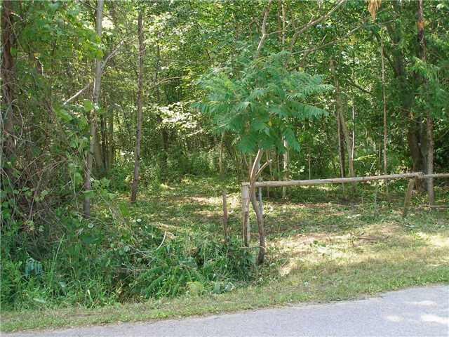 Vacant Land at 123 Riverbank Rd, Georgina, Ontario. Image 7