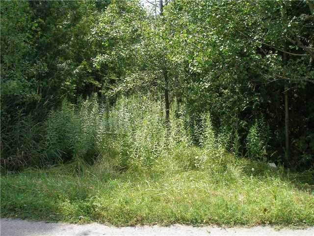 Vacant Land at 123 Riverbank Rd, Georgina, Ontario. Image 8