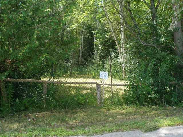 Vacant Land at 123 Riverbank Rd, Georgina, Ontario. Image 9