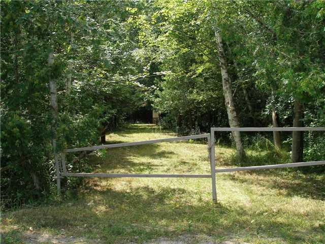 Vacant Land at 123 Riverbank Rd, Georgina, Ontario. Image 10