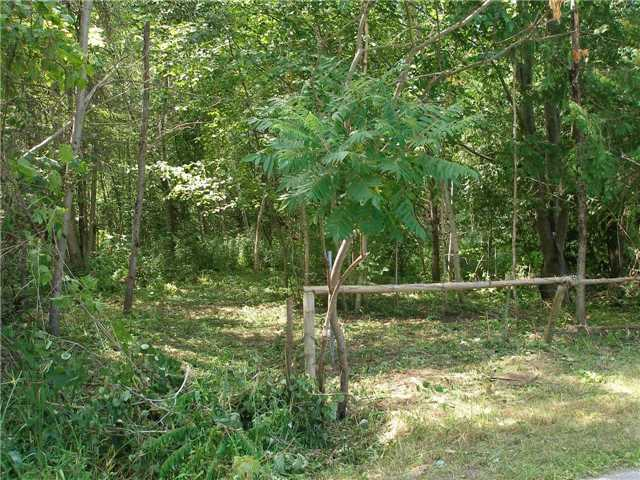 Vacant Land at 123 Riverbank Rd, Georgina, Ontario. Image 11