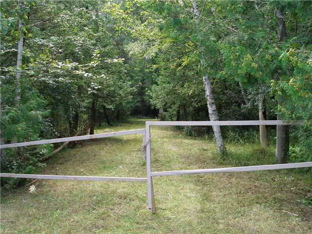 Vacant Land at 130 Riverview Beach Rd, Georgina, Ontario. Image 3