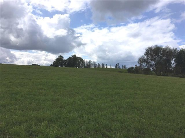 Vacant Land at 6789 4th Line, New Tecumseth, Ontario. Image 2