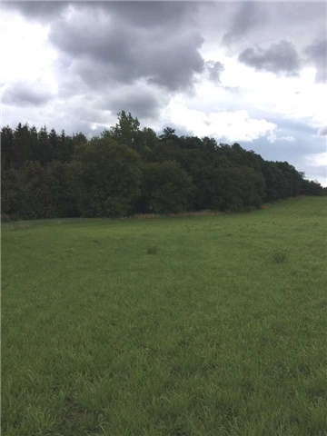 Vacant Land at 6789 4th Line, New Tecumseth, Ontario. Image 3