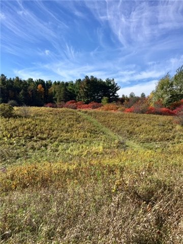 Vacant Land at 14013 Bayview Ave, Aurora, Ontario. Image 1