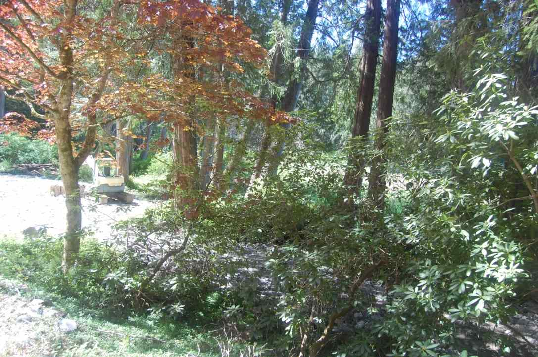 Vacant Land at 12427 SUNSHINE COAST HIGHWAY, Sunshine Coast, British Columbia. Image 6