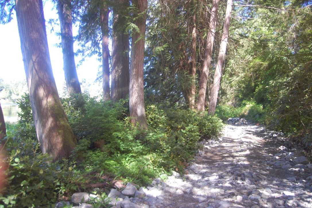 Vacant Land at 12427 SUNSHINE COAST HIGHWAY, Sunshine Coast, British Columbia. Image 8