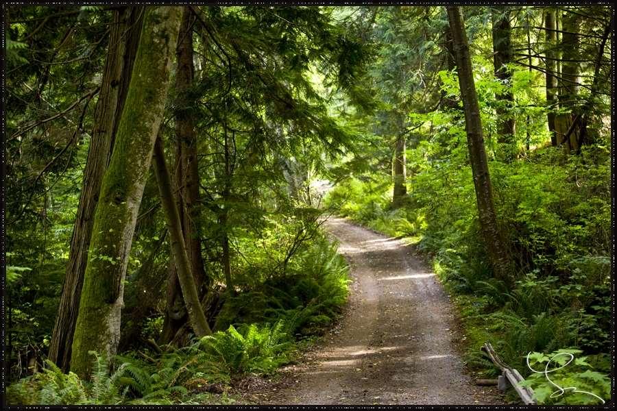 Detached at 720 GARDNER STREET, Bowen Island, British Columbia. Image 1