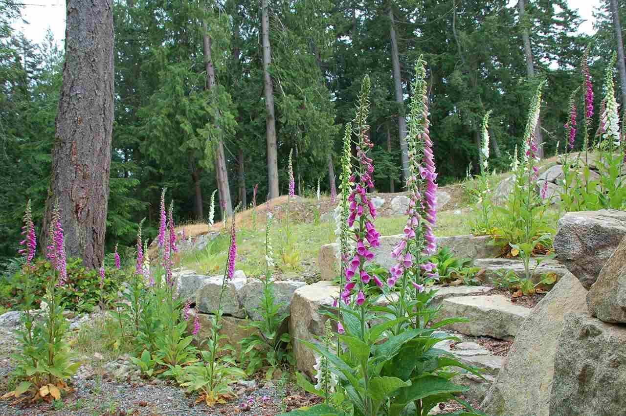 Vacant Land at LOT 1 THE RIDGE AT EVERGREEN, Bowen Island, British Columbia. Image 4