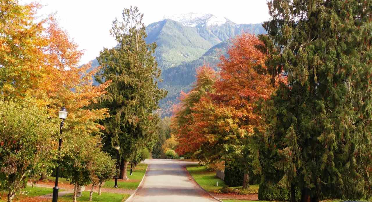 Vacant Land at 10101 PARKWOOD DRIVE, Rosedale, British Columbia. Image 8