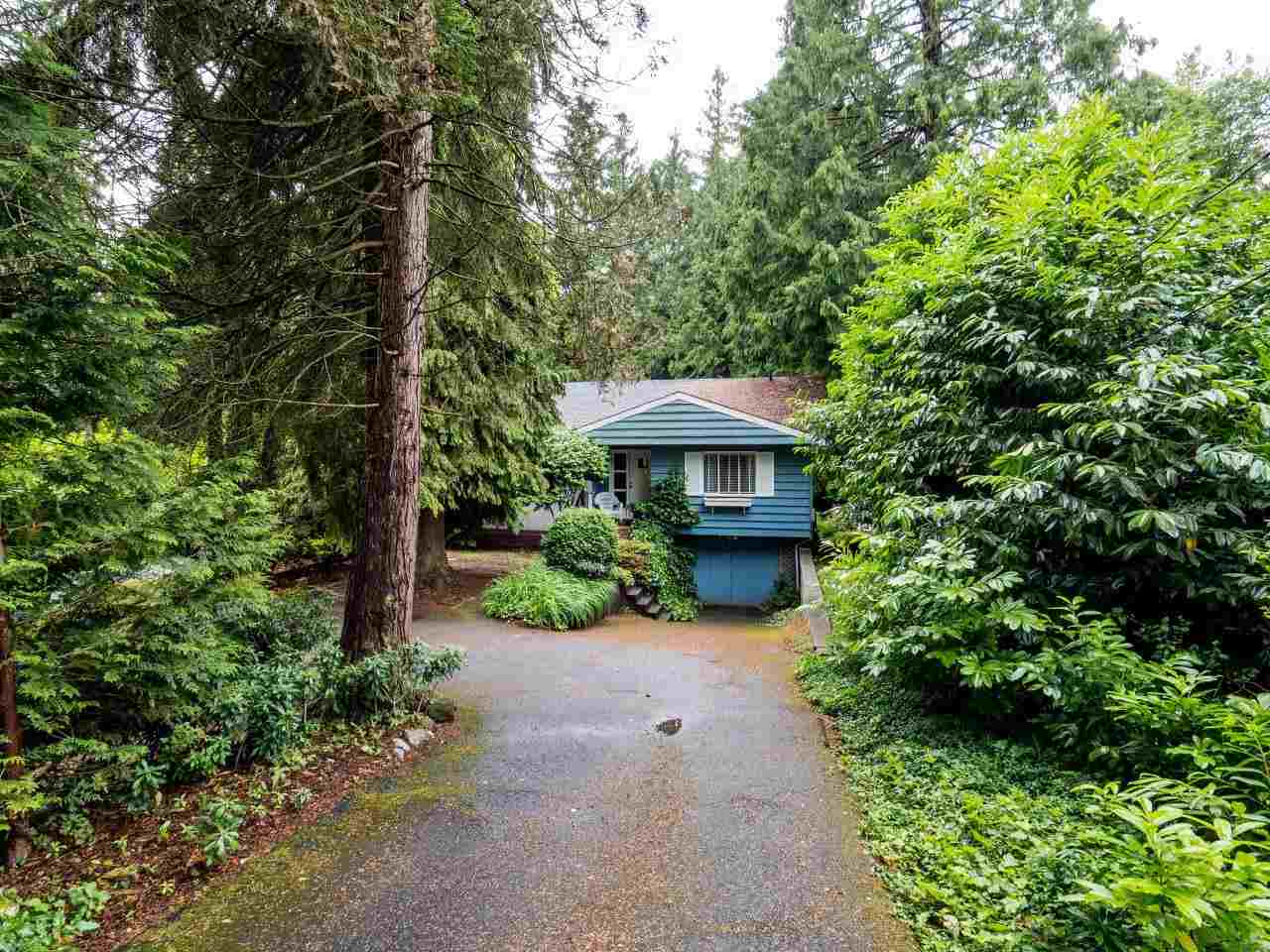 Detached at 3781 CALDER AVENUE, North Vancouver, British Columbia. Image 16