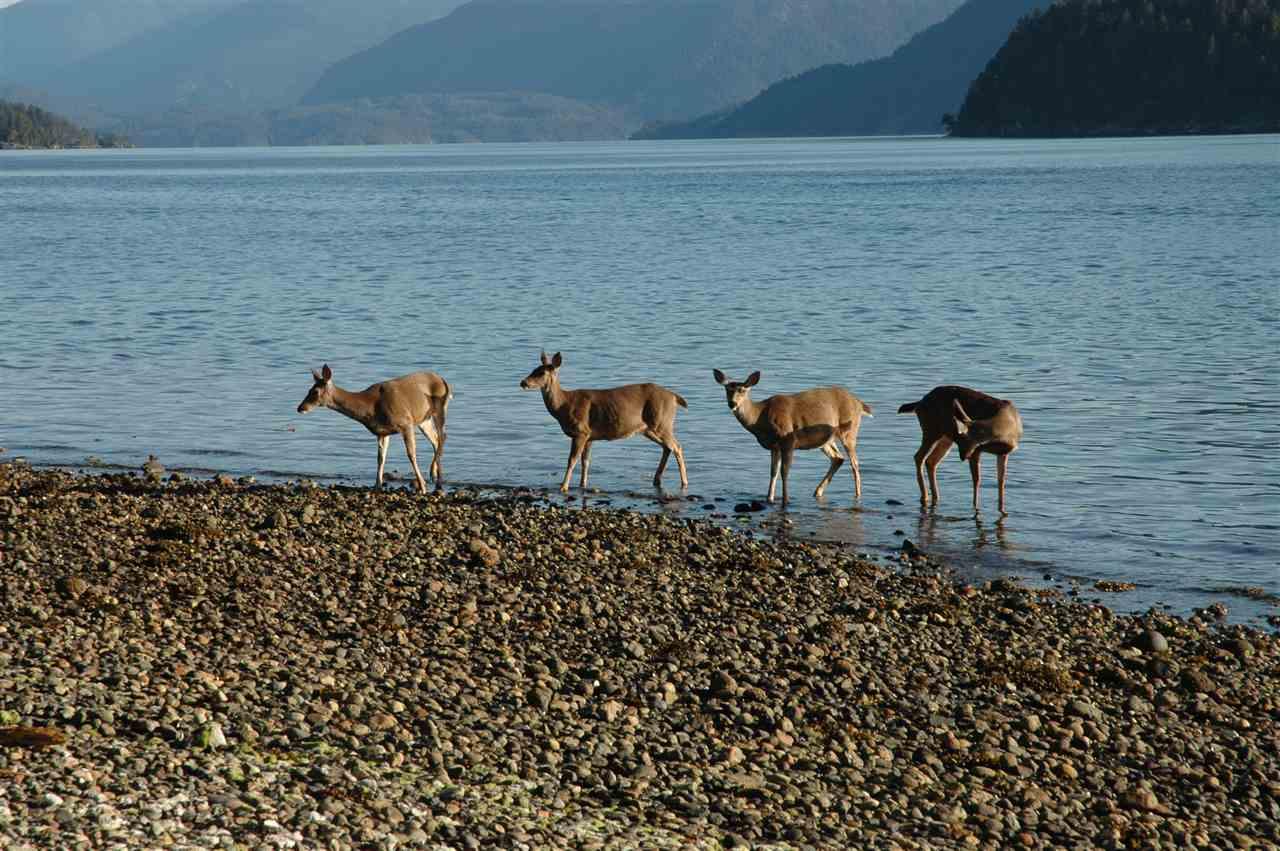 Detached at 6394 N GALE AVENUE, Sunshine Coast, British Columbia. Image 20