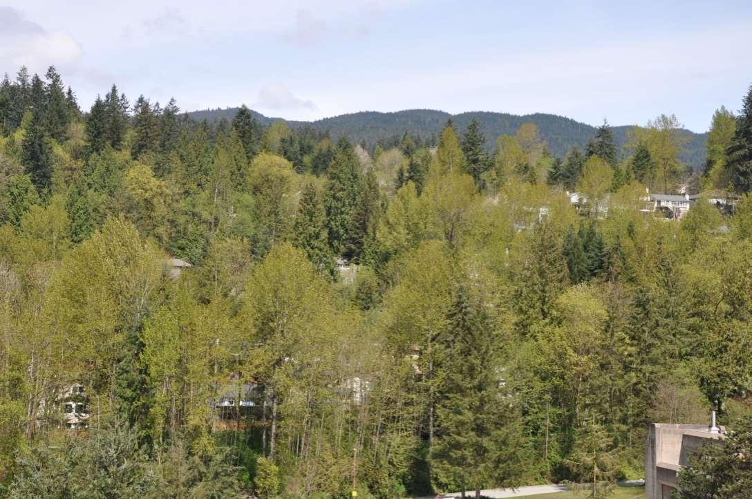 Condo Apartment at 1101 290 NEWPORT DRIVE, Unit 1101, Port Moody, British Columbia. Image 8