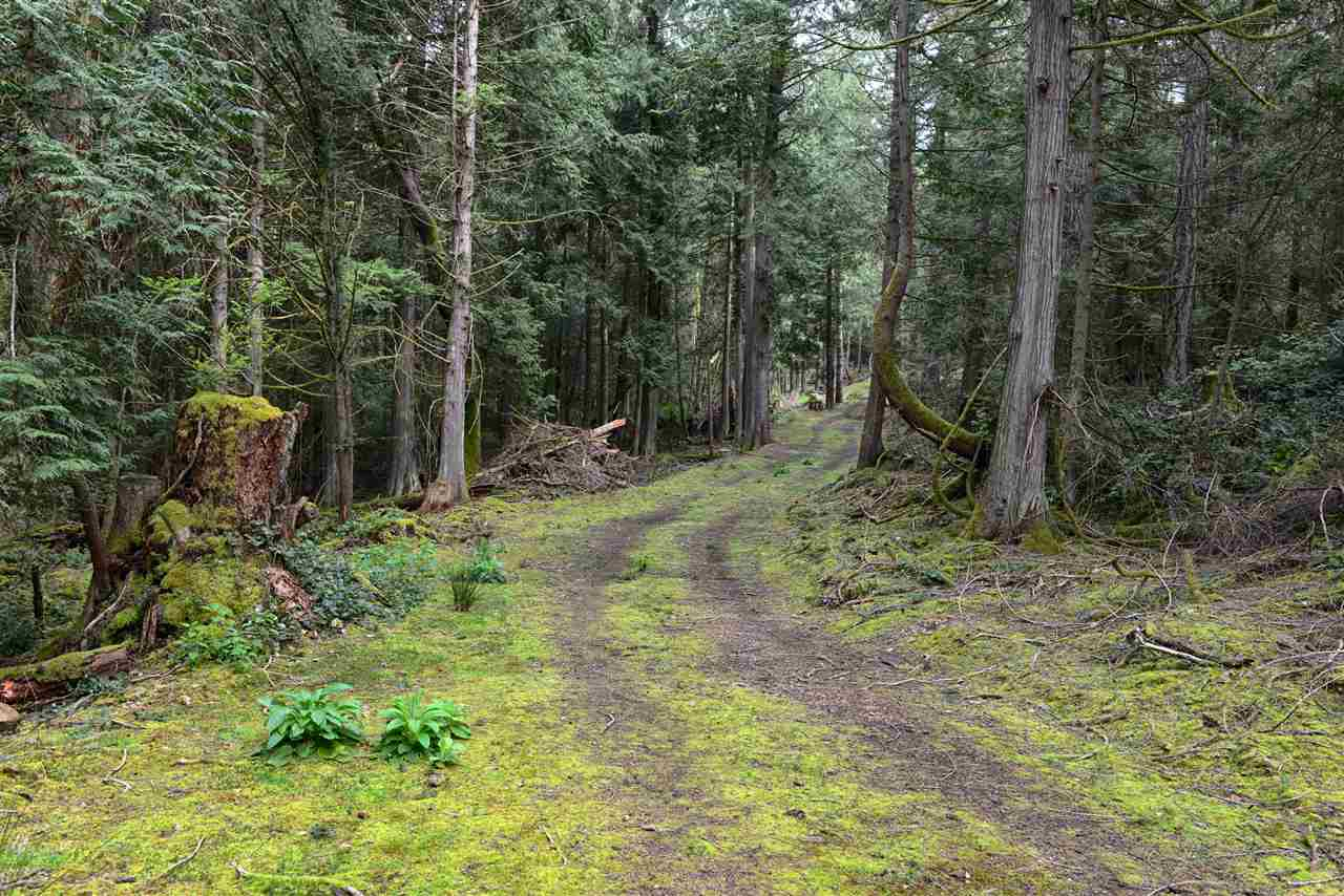 Vacant Land at 251 GEORGINA POINT ROAD, Unit 251, Out of Town, British Columbia. Image 12