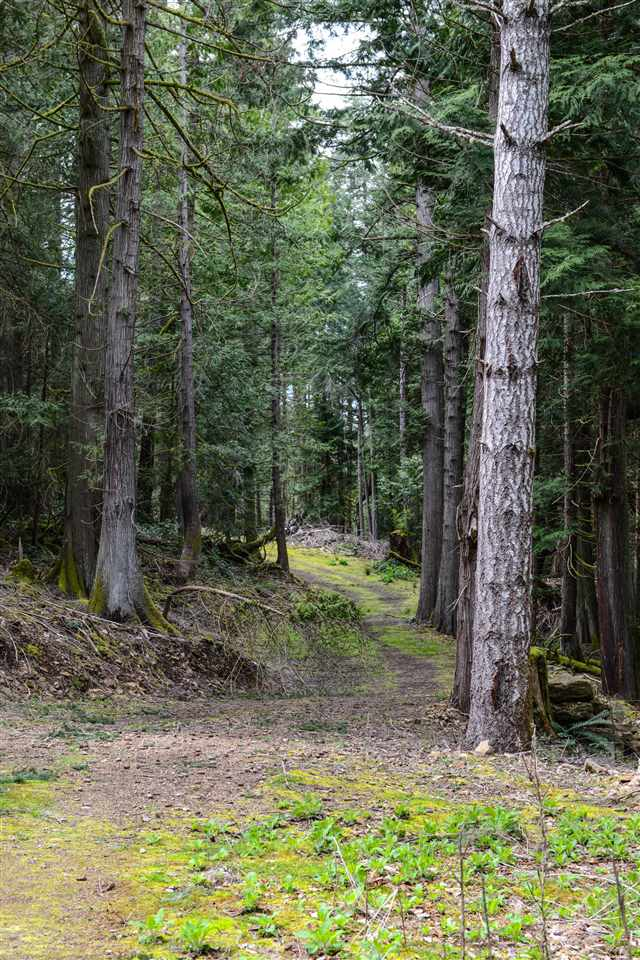 Vacant Land at 251 GEORGINA POINT ROAD, Unit 251, Out of Town, British Columbia. Image 13