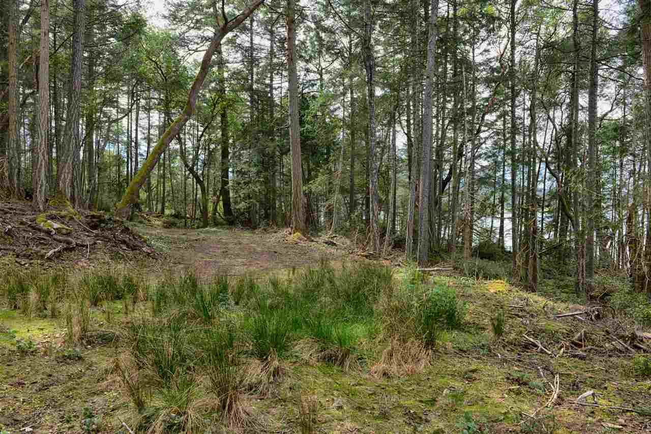 Vacant Land at 251 GEORGINA POINT ROAD, Unit 251, Out of Town, British Columbia. Image 14