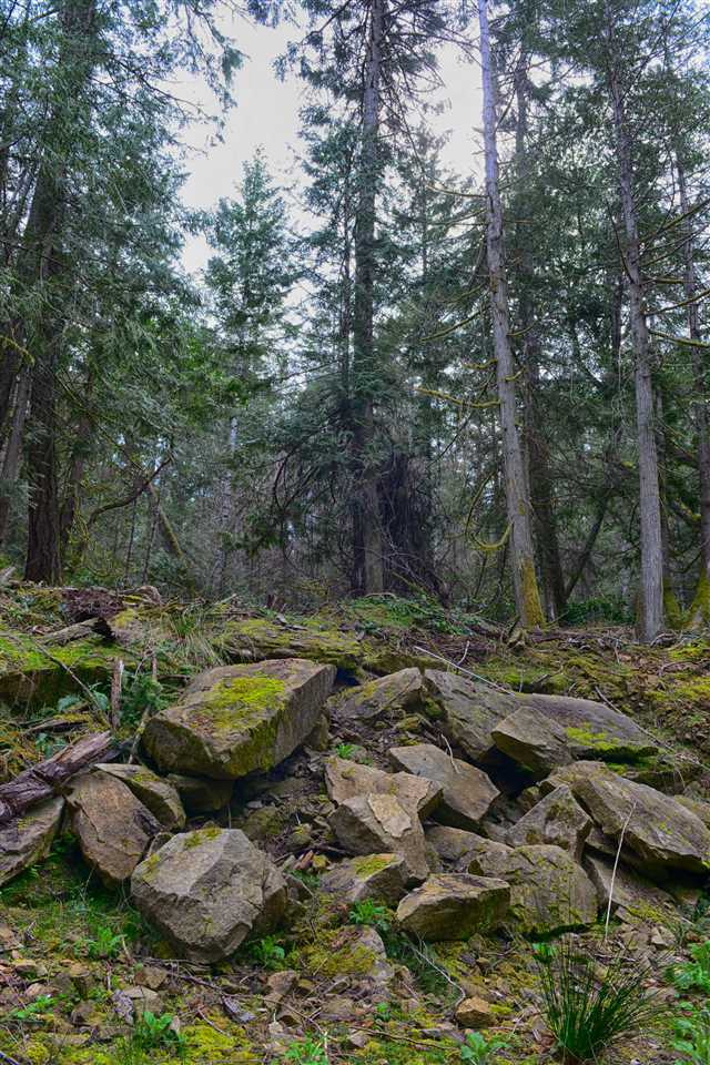 Vacant Land at 251 GEORGINA POINT ROAD, Unit 251, Out of Town, British Columbia. Image 15