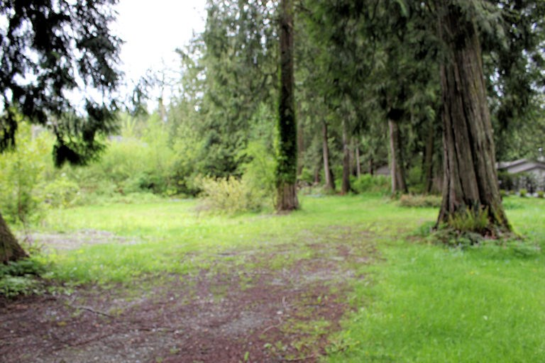 Vacant Land at 12960 246 STREET, Maple Ridge, British Columbia. Image 5