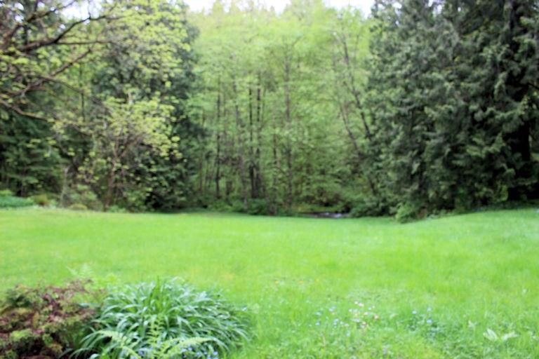Vacant Land at 12960 246 STREET, Maple Ridge, British Columbia. Image 10