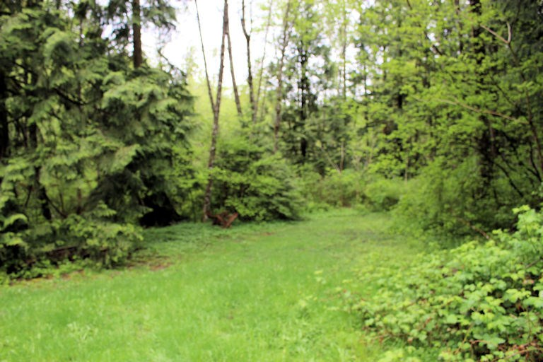 Vacant Land at 12960 246 STREET, Maple Ridge, British Columbia. Image 13
