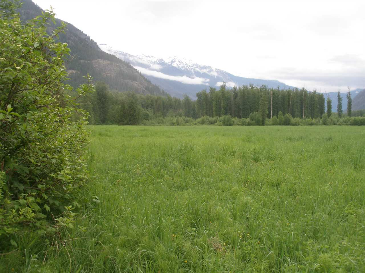 Vacant Land at 9651 PEMBERTON MEADOWS, Pemberton, British Columbia. Image 5