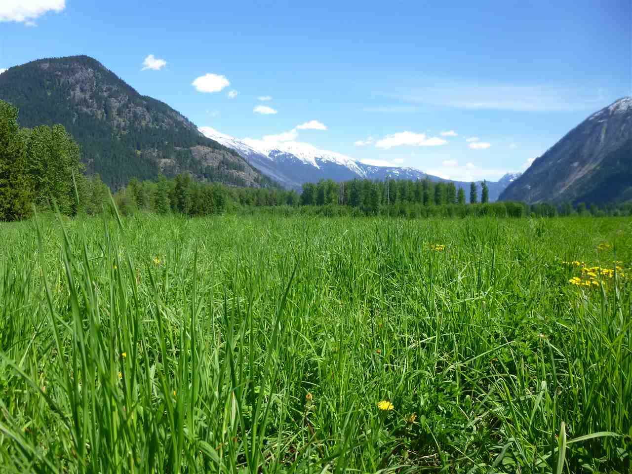 Vacant Land at 9651 PEMBERTON MEADOWS, Pemberton, British Columbia. Image 8