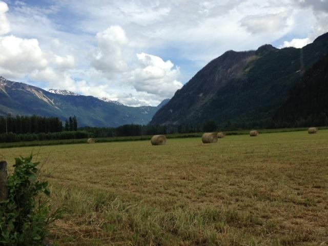 Vacant Land at 9651 PEMBERTON MEADOWS, Pemberton, British Columbia. Image 11