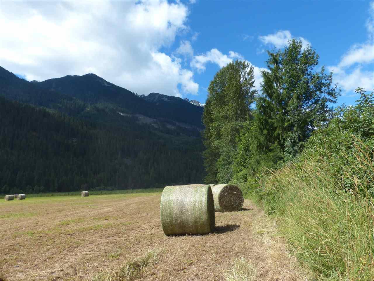 Vacant Land at 9651 PEMBERTON MEADOWS, Pemberton, British Columbia. Image 13