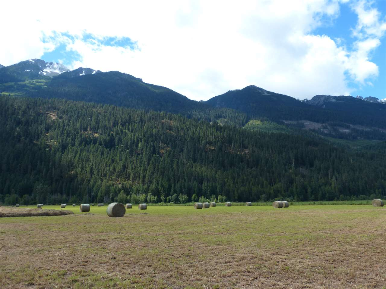 Vacant Land at 9651 PEMBERTON MEADOWS, Pemberton, British Columbia. Image 19