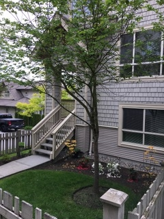 Townhouse at 78 2738 158 STREET, Unit 78, South Surrey White Rock, British Columbia. Image 1