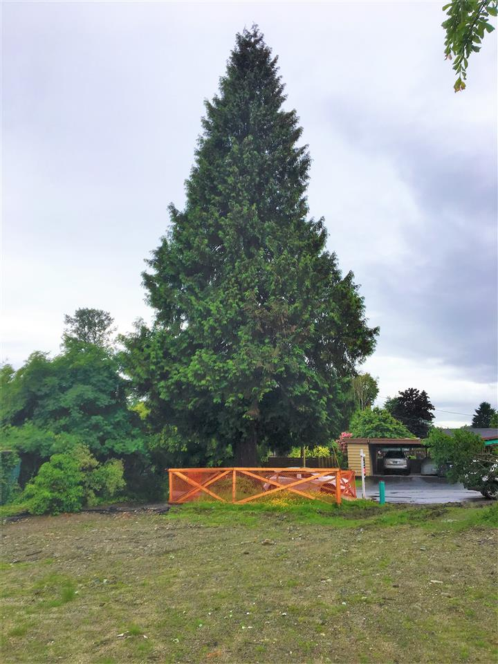 Vacant Land at 1108 MAPLEWOOD CRESCENT, North Vancouver, British Columbia. Image 13