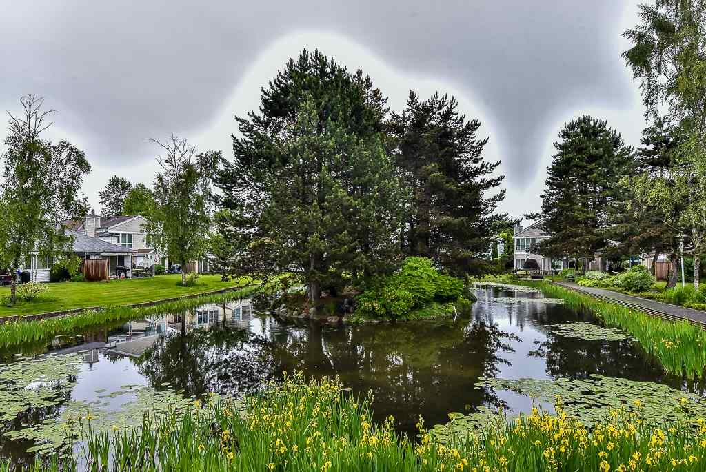 Townhouse at 12243 92 AVENUE, Surrey, British Columbia. Image 19