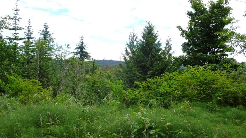 Vacant Land at 130 BONNET AVENUE, Islands-Van. & Gulf, British Columbia. Image 4