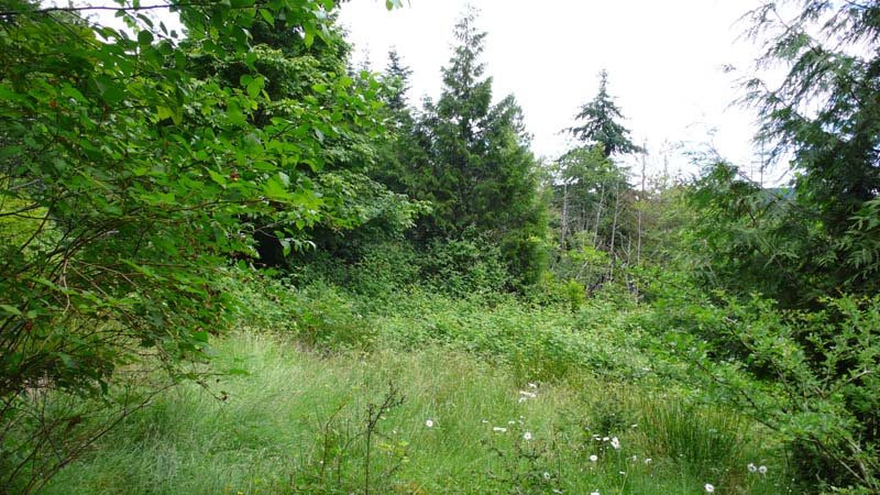 Vacant Land at 130 BONNET AVENUE, Islands-Van. & Gulf, British Columbia. Image 8