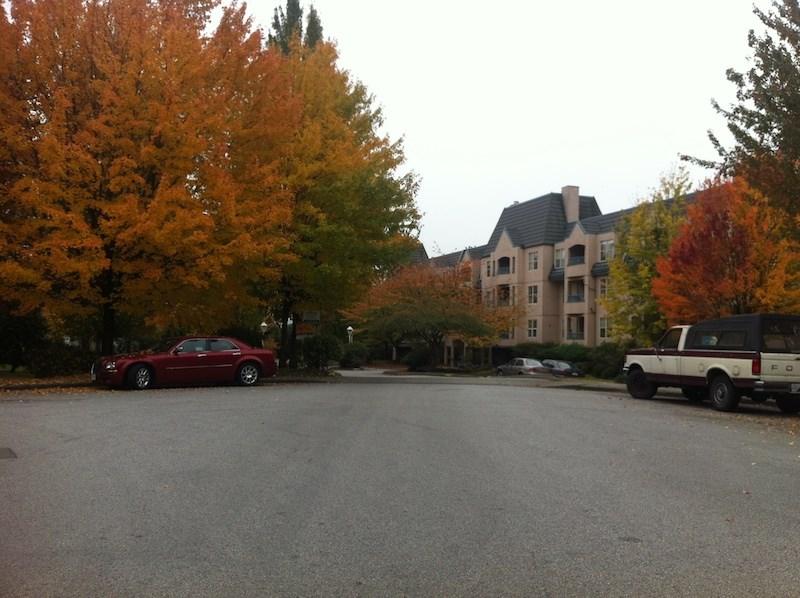 Condo Apartment at 316 98 LAVAL STREET, Unit 316, Coquitlam, British Columbia. Image 1