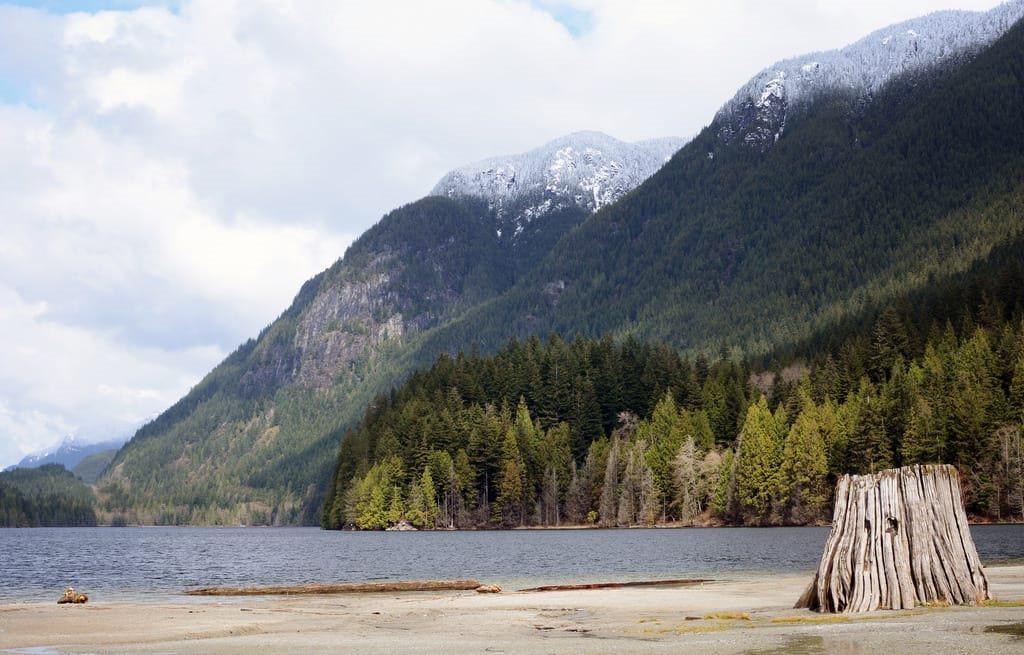 Detached at 70 3295 SUNNYSIDE ROAD, Unit 70, Port Moody, British Columbia. Image 7