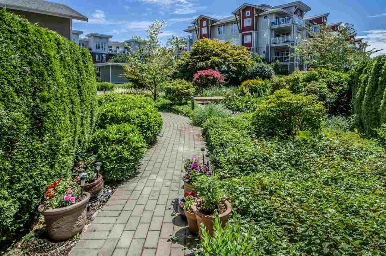 Condo Apartment at 102 - 4280 MONCTON STREET, Unit 102 -, Richmond, British Columbia. Image 19