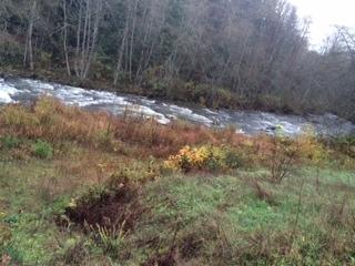 Detached at 13075 ALOUETTE ROAD, Maple Ridge, British Columbia. Image 9