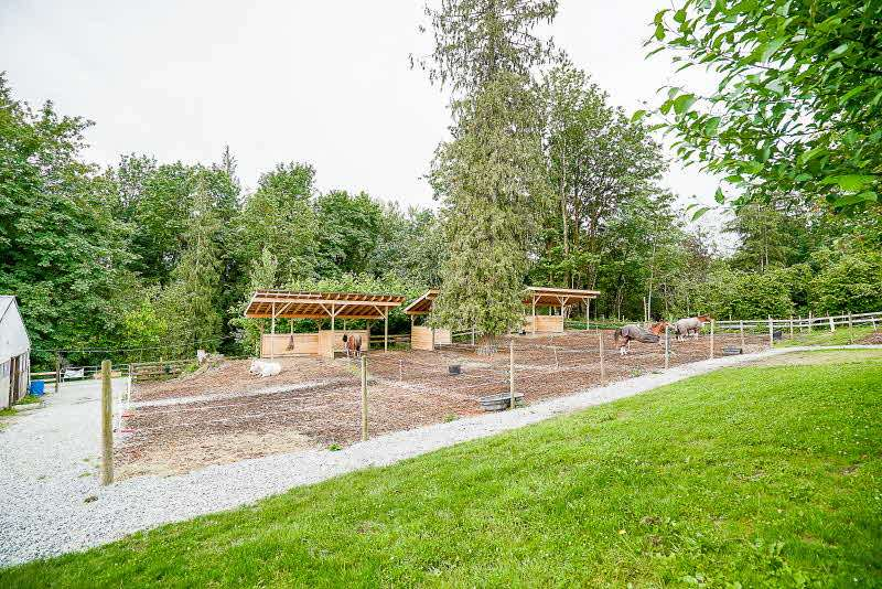 Detached at 31050 HARRIS ROAD, Abbotsford, British Columbia. Image 19
