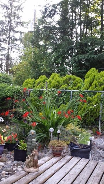 Detached at 17681 97 AVENUE, North Surrey, British Columbia. Image 4