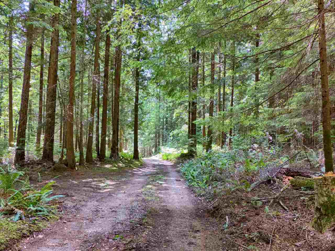 Vacant Land at Lot G GIBB ROAD, Sunshine Coast, British Columbia. Image 14