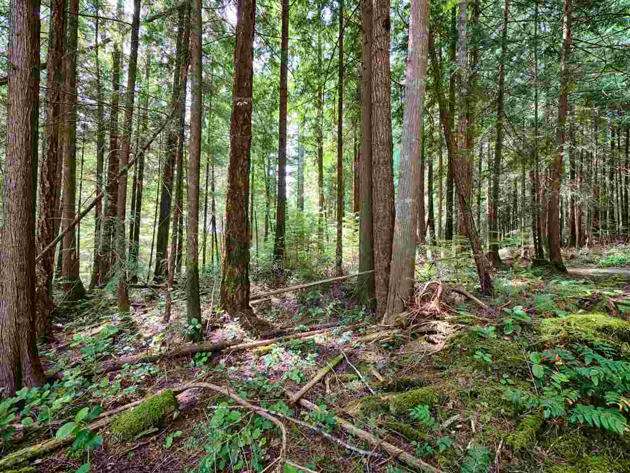 Vacant Land at Lot G GIBB ROAD, Sunshine Coast, British Columbia. Image 15
