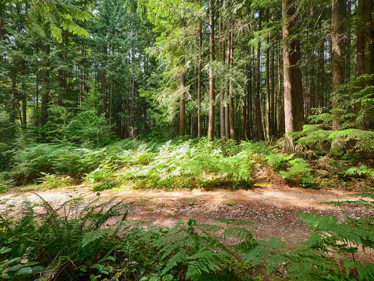 Vacant Land at Lot G GIBB ROAD, Sunshine Coast, British Columbia. Image 16