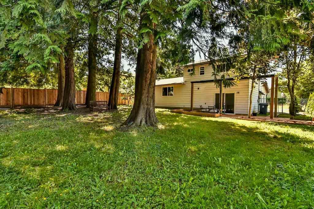 Detached at 14865 92 AVENUE, Surrey, British Columbia. Image 5