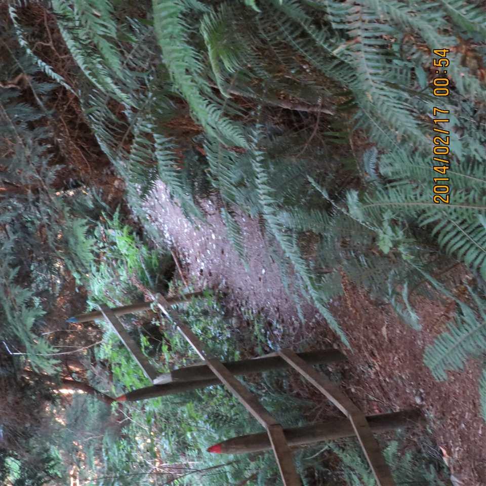 Detached at 966 WINDJAMMER ROAD, Bowen Island, British Columbia. Image 17