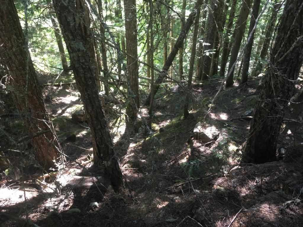 Vacant Land at 14690 PARKVIEW AVENUE, Hope, British Columbia. Image 2