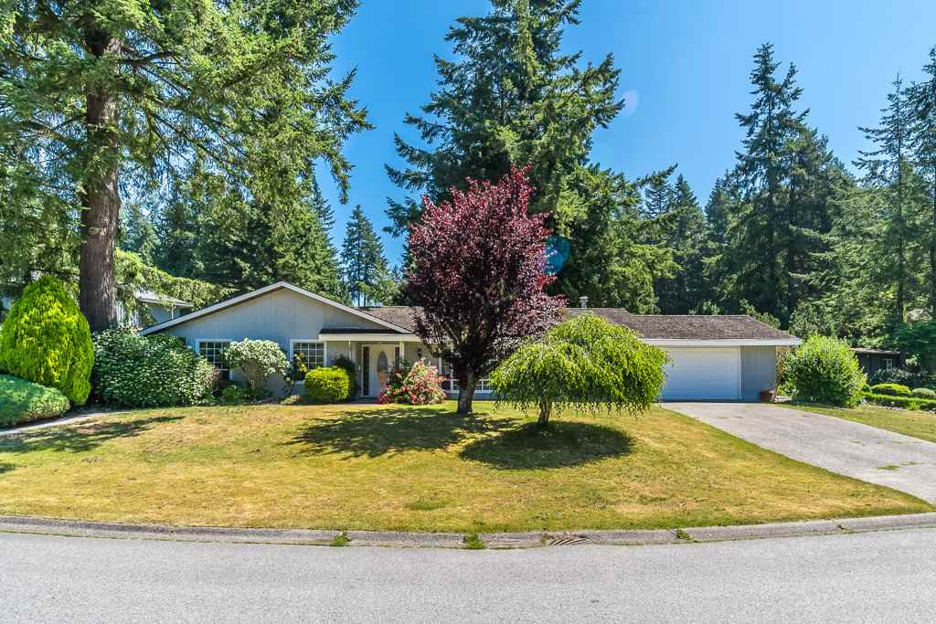 Detached at 11158 MAY PLACE, N. Delta, British Columbia. Image 1