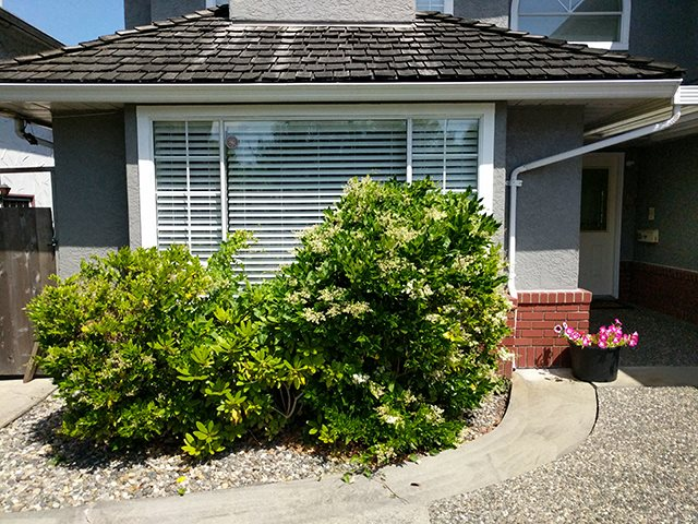 Detached at 5731 BLUNDELL ROAD, Richmond, British Columbia. Image 11