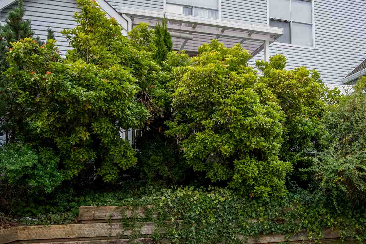 Townhouse at 11 13713 72A AVENUE, Unit 11, Surrey, British Columbia. Image 20